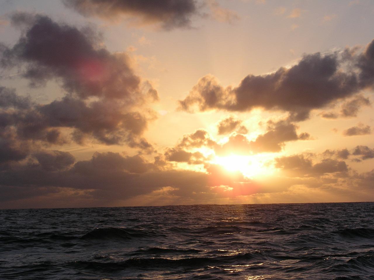 Real ocean sky forex
